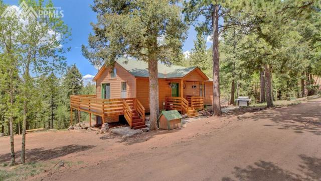 233 Troy Drive, Cripple Creek, CO 80813 (#6810102) :: 8z Real Estate