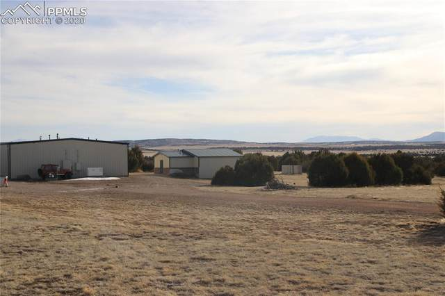 6040 Big Sky Drive, Rye, CO 81069 (#6812659) :: CC Signature Group