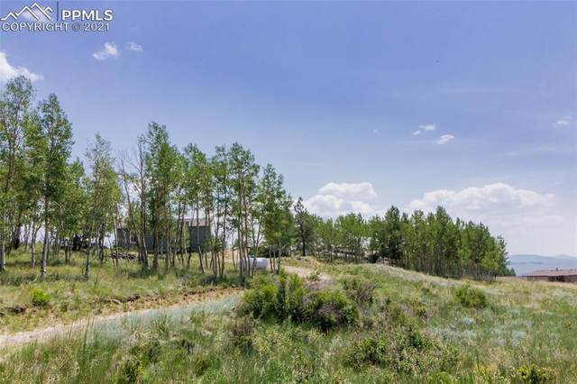 304 Topaz Road, Lake George, CO 80827 (#6840359) :: Fisk Team, eXp Realty