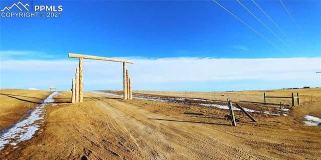 7140 Wrangler Ranch View, Peyton, CO 80831 (#6840887) :: 8z Real Estate