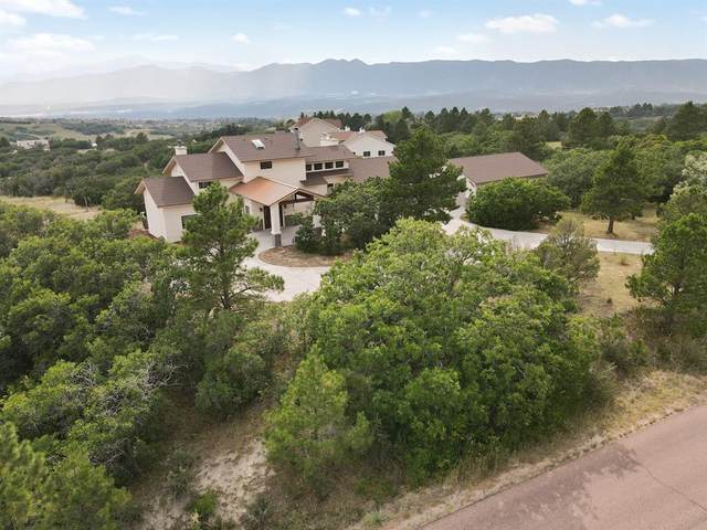 1335 Pleier Drive, Colorado Springs, CO 80921 (#6859607) :: Simental Homes | The Cutting Edge, Realtors