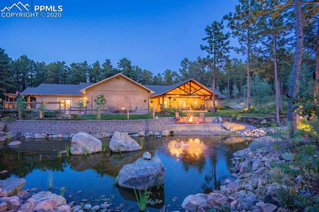 11675 Black Forest Road, Colorado Springs, CO 80908 (#6863875) :: The Peak Properties Group