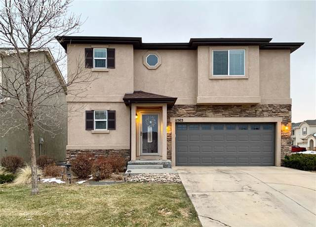 11503 Mountain Turtle Drive, Colorado Springs, CO 80921 (#6875342) :: Perfect Properties powered by HomeTrackR