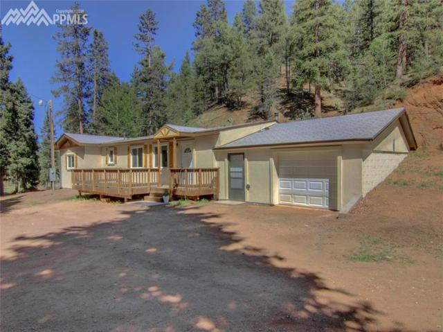 4020 Trout Creek Road, Woodland Park, CO 80863 (#6892110) :: Jason Daniels & Associates at RE/MAX Millennium