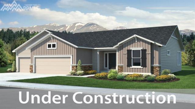 2598 Hannah Ridge Drive, Colorado Springs, CO 80922 (#6894542) :: 8z Real Estate