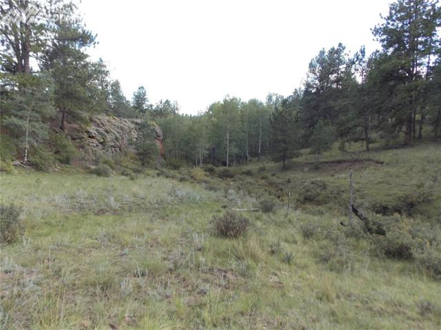 TBD County 12 Road, Florissant, CO 80816 (#6904083) :: 8z Real Estate