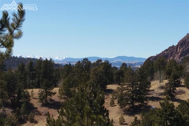 376 Wilson Way, Cripple Creek, CO 80813 (#6911649) :: Jason Daniels & Associates at RE/MAX Millennium