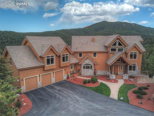 800 Elk Ridge South Road, Divide, CO 80814 (#6914682) :: Tommy Daly Home Team