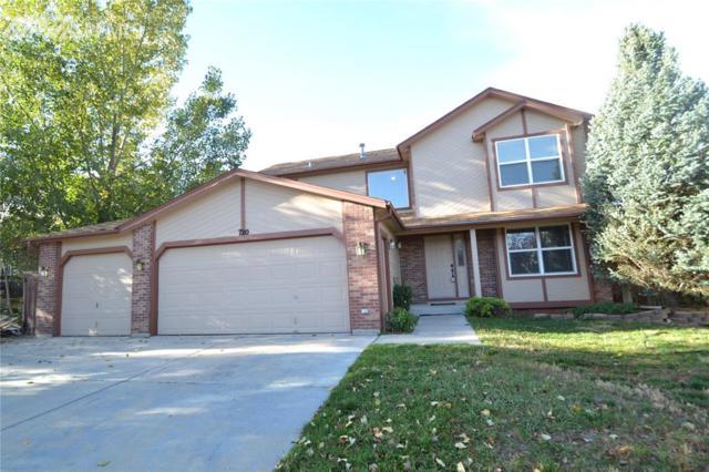 720 Stargate Drive, Colorado Springs, CO 80911 (#6919961) :: 8z Real Estate