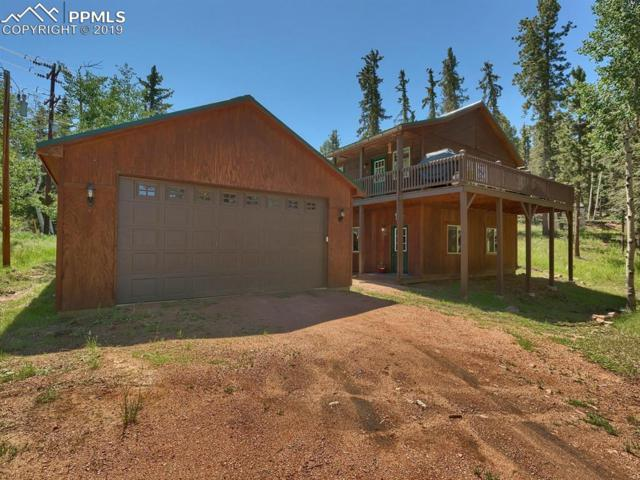 20 Golden Lane, Florissant, CO 80816 (#6931701) :: Jason Daniels & Associates at RE/MAX Millennium