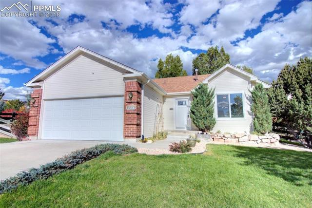 15579 Candle Creek Drive, Monument, CO 80132 (#6939349) :: Fisk Team, RE/MAX Properties, Inc.