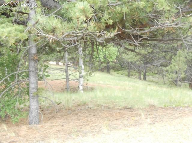 521 Vindicator Drive, Cripple Creek, CO 80813 (#6945937) :: 8z Real Estate