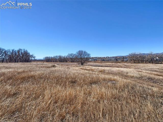 8750 Valley Ranch Point, Fountain, CO 80817 (#6954857) :: 8z Real Estate
