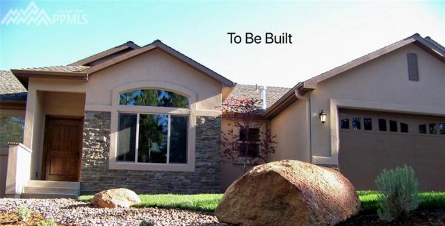 18490 Lower Lake Road, Monument, CO 80132 (#6960832) :: Action Team Realty