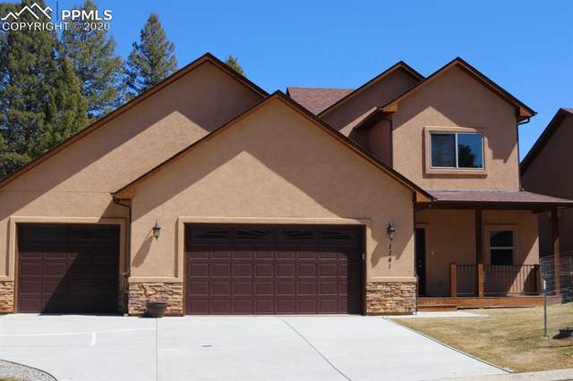 1141 Ptarmigan Drive, Woodland Park, CO 80863 (#6962157) :: Action Team Realty
