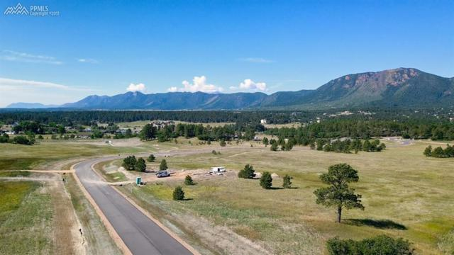 601 Pioneer Haven Point, Palmer Lake, CO 80133 (#6970739) :: 8z Real Estate