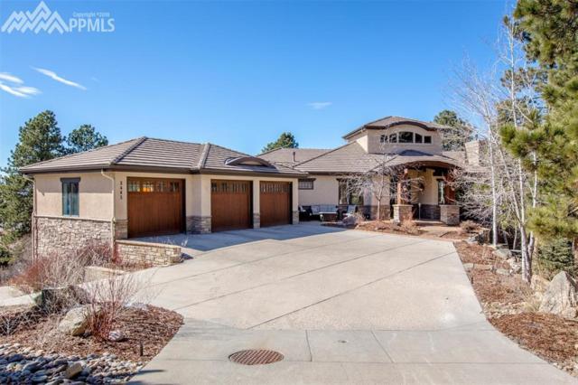 2463 Saddleback Court, Castle Rock, CO 80104 (#7002459) :: 8z Real Estate