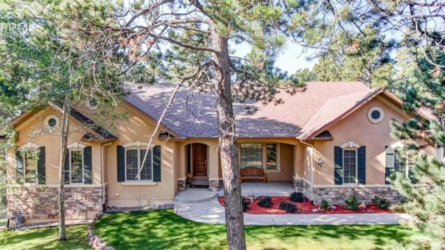 4781 Secluded Creek Court, Colorado Springs, CO 80908 (#7004946) :: Action Team Realty