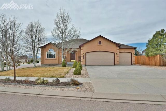 7355 Salish Boulevard, Colorado Springs, CO 80923 (#7030725) :: Jason Daniels & Associates at RE/MAX Millennium