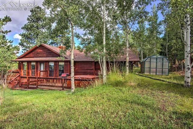 1211 Telemark Drive, Woodland Park, CO 80863 (#7051153) :: CC Signature Group
