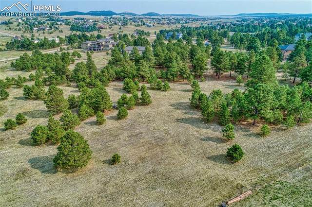 645 E Kings Deer Point, Monument, CO 80132 (#7107330) :: Action Team Realty