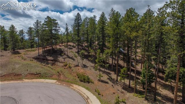 1200 Cottontail Trail, Woodland Park, CO 80863 (#7116081) :: Tommy Daly Home Team