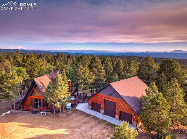 66 Blue Mesa Drive, Divide, CO 80814 (#7119380) :: Action Team Realty