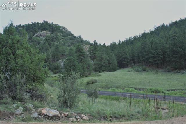 TBD Cap Rock Lane, Canon City, CO 81212 (#7121510) :: 8z Real Estate