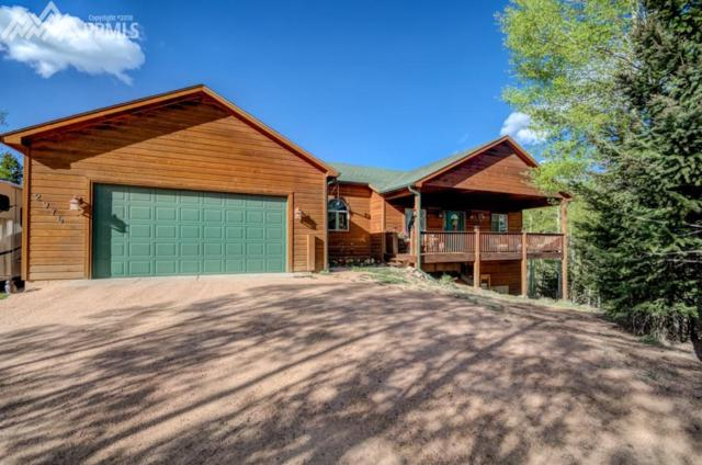 2976 County 61 Road, Cripple Creek, CO 80813 (#7131489) :: 8z Real Estate
