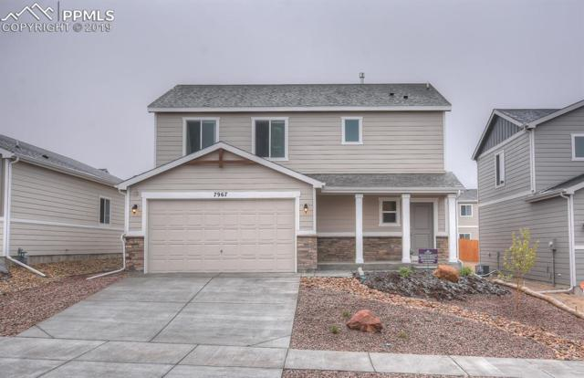 7967 Martinwood Place, Colorado Springs, CO 80908 (#7133100) :: CC Signature Group