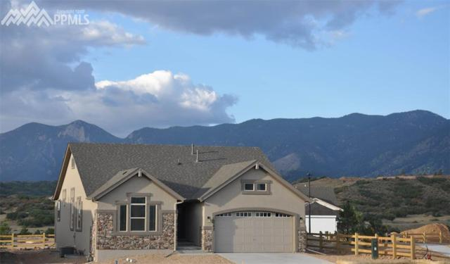 15742 Lake Mist Drive, Monument, CO 80132 (#7136820) :: 8z Real Estate