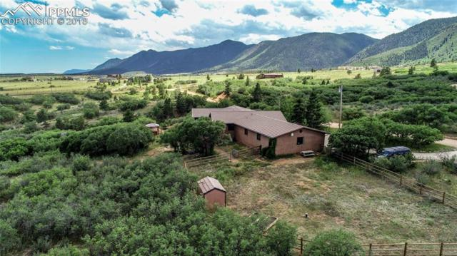 16495 Mount Herman Lane, Monument, CO 80132 (#7138629) :: Harling Real Estate
