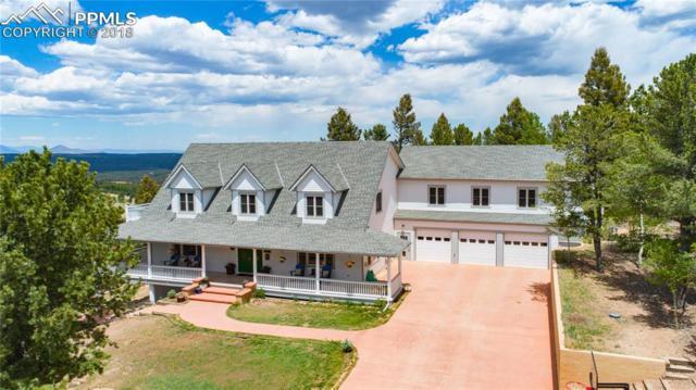 191 Elk Lane, Woodland Park, CO 80863 (#7149056) :: 8z Real Estate