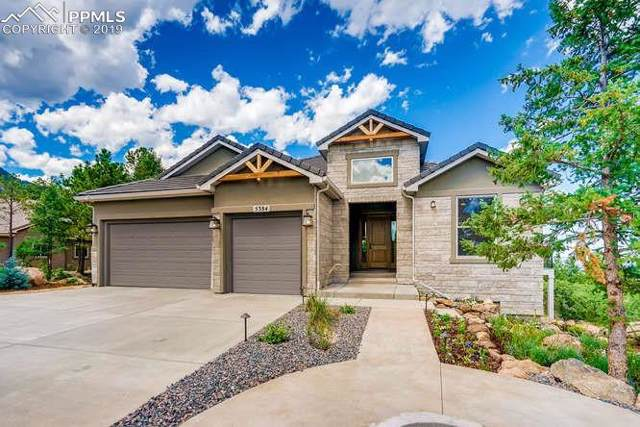 5384 Old Star Ranch View, Colorado Springs, CO 80906 (#7163423) :: CC Signature Group