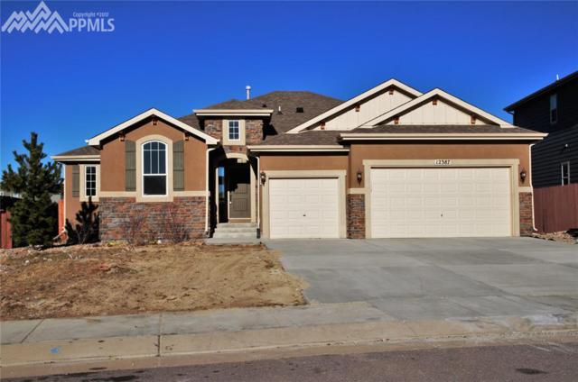 12387 Handles Peak Way, Peyton, CO 80831 (#7194628) :: The Peak Properties Group