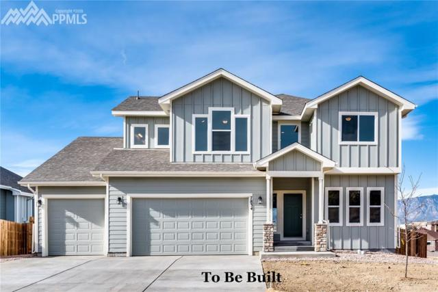 7808 Twin Creek Terrace, Fountain, CO 80817 (#7198700) :: Jason Daniels & Associates at RE/MAX Millennium