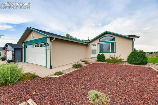 7697 Grosbeak Point, Colorado Springs, CO 80922 (#7204478) :: 8z Real Estate