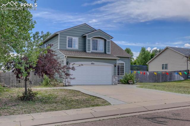 2955 Walton Creek Drive, Colorado Springs, CO 80922 (#7206452) :: Tommy Daly Home Team