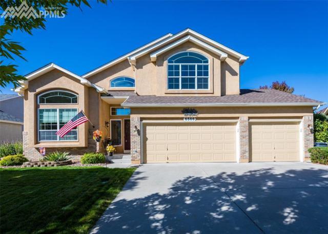 6566 Annanhill Place, Colorado Springs, CO 80922 (#7212995) :: 8z Real Estate
