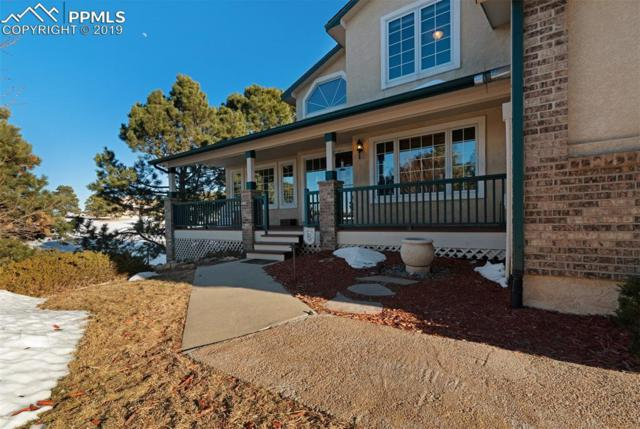 19135 Pagentry Place, Monument, CO 80132 (#7236202) :: Tommy Daly Home Team