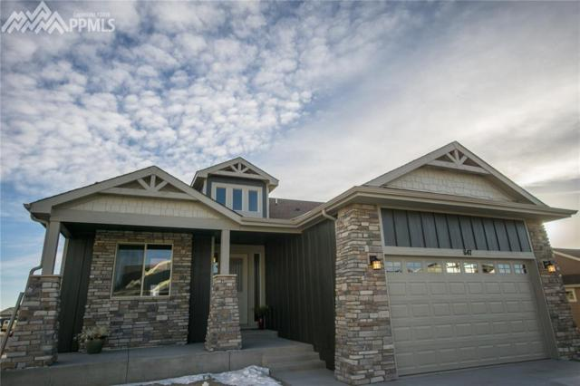 1147 Seabiscuit Drive, Colorado Springs, CO 80921 (#7239420) :: Action Team Realty