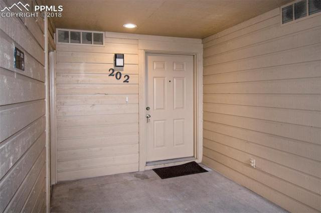 148 W Rockrimmon Boulevard #202, Colorado Springs, CO 80919 (#7242539) :: Colorado Home Finder Realty