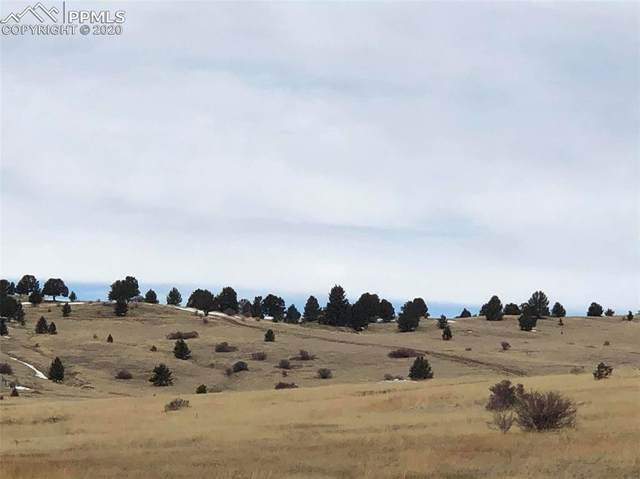 TBD Tablerock Road, Cripple Creek, CO 80813 (#7243452) :: Tommy Daly Home Team