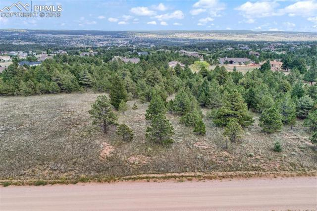 Lot 12 Forest View Road, Monument, CO 80132 (#7259775) :: Action Team Realty