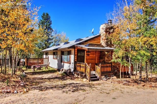 9757 S Highway 67 Highway, Cripple Creek, CO 80813 (#7277649) :: The Daniels Team