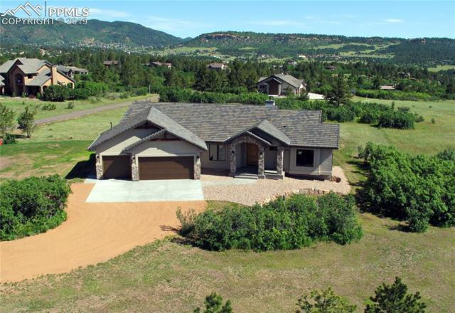 803 Forest View Way, Monument, CO 80132 (#7279916) :: Action Team Realty