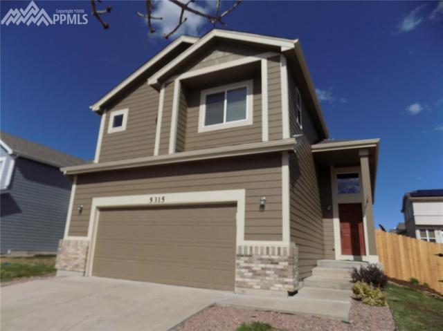 5315 Standard Drive, Colorado Springs, CO 80922 (#7289452) :: Jason Daniels & Associates at RE/MAX Millennium
