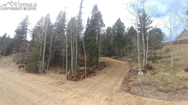 190 Saguache Drive, Florissant, CO 80816 (#7294241) :: Fisk Team, RE/MAX Properties, Inc.