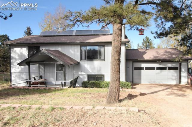 35 Illini Drive, Woodland Park, CO 80863 (#7305763) :: The Dunfee Group - powered by eXp Realty