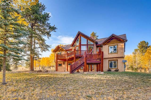 105 Bald Eagle View, Divide, CO 80814 (#7307922) :: The Kibler Group